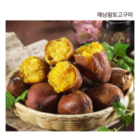[새순농장]해남 호박고구마 / 첫사랑 꿀고구마 (3kg/5kg)